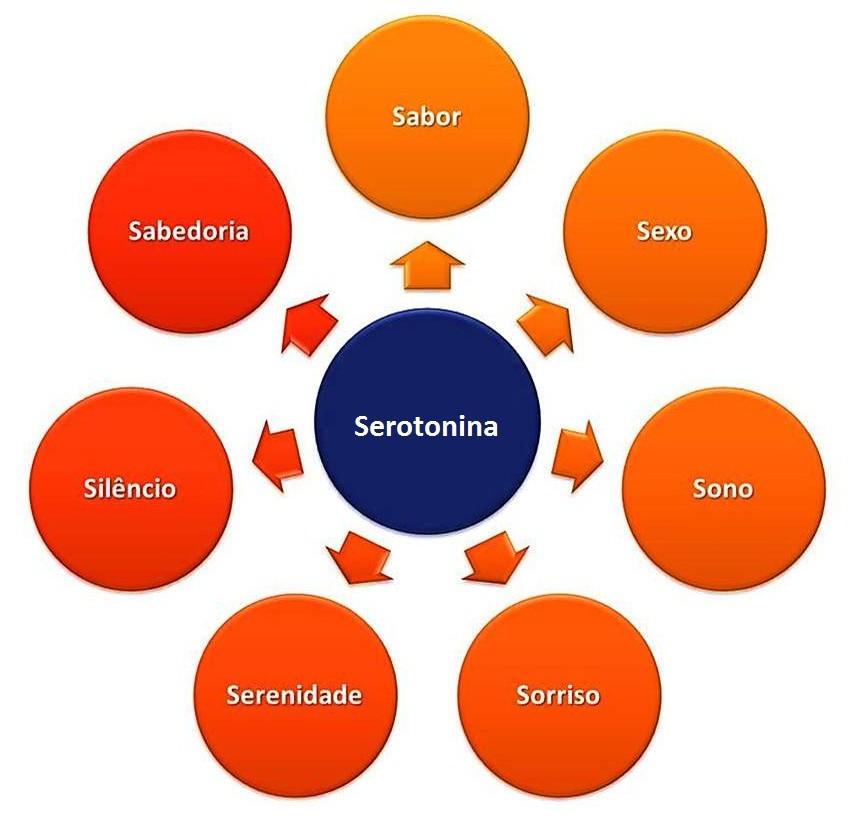 serotonina-fisest